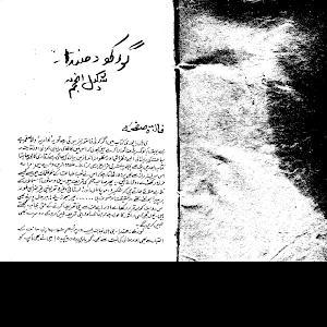 Gorakh Dhanda by Shakeel Anjum 1