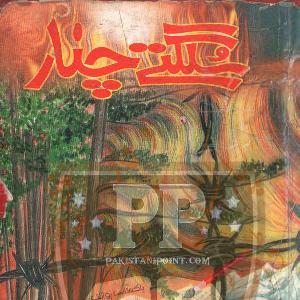 Sulagtay Chnar by Nasir Baig Chugtai 1