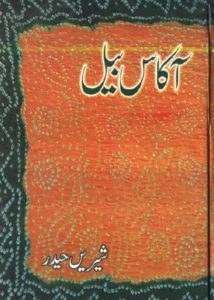 Akas Bail Novel By Shireen Haider 1