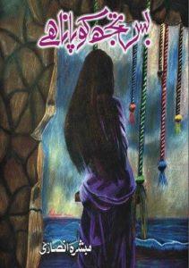 Bas Tujh Ko Pana Hai Novel By Mubashara Ansari 1