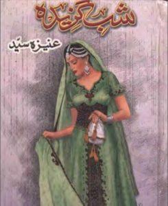 Shab Gazeeda Novel By Aneeza Syed 1