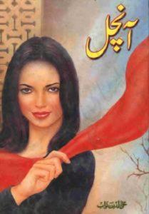 Aanchal Novel By Mohiuddin Nawab 1