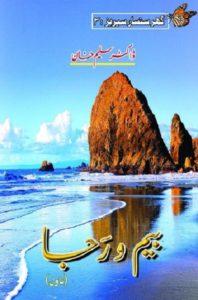 Beem O Raja Novel By Dr Saleem Khan 1