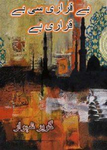 Beqarari Si Beqarari Hai Novel By Gohar Shahwar 1
