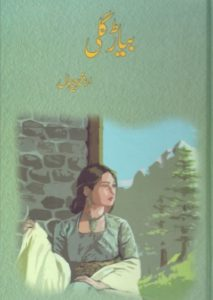 Biyar Gali Novel By Arshad Chahal 1