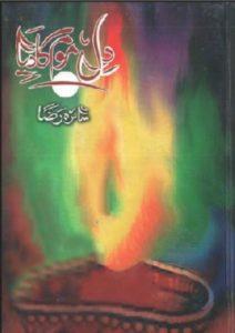 Dil Mom Ka Diya Novel By Saira Raza 1