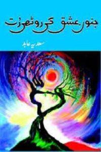 Junoon e Ishq Ki Roothi Rut Novel By Sadia Abid 1