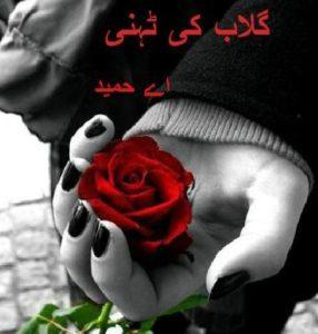Gulab Ki Tehni Novel By A Hameed 1