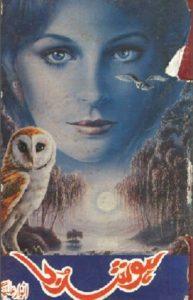 Hoshruba Novel By Anwar Aligi 1