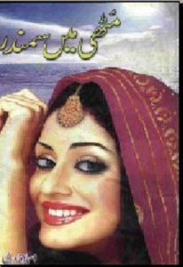 Muthi Mein Samandar By Asma Qadri 1