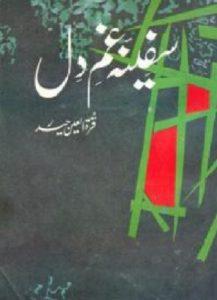Safeenah e Gham e Dil By Quratulain Haider 1