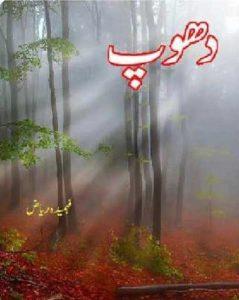 Dhoop Poetry Book By Fehmida Riaz 1
