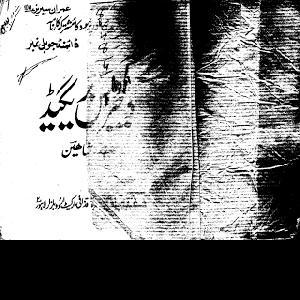 Dangerous Brigade Imran Series by Safdar Shaheen 1