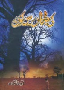 Ki Janan Main Kon Novel By Farhat Shaukat 1