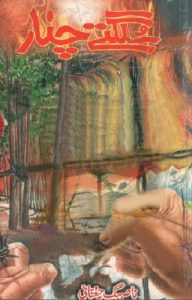 Sulagte Chanar Novel By Nasir Baig Chughtai 1