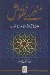 Sunehray Naqoosh Urdu By Abdul Malik Mujahid 1