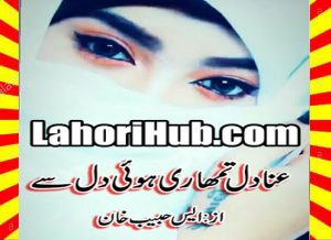 Anadil Tumhari Hui Dil Se Urdu Novel By S Habib Khan 1