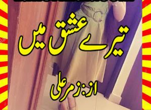 Tere Ishq Mein Urdu Novel By Zummer Ali 1