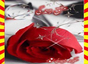 Ishq Zindagi Urdu Novel By Sukaina Zaidi 1