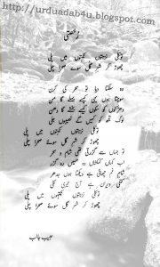 Rukhsati by Shakar Usmani 1
