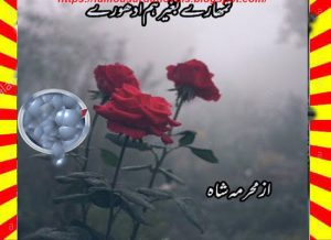 Tumhary Bagher Hum Adhoory Urdu Novel By Mehrmah Shah Episode 3 1