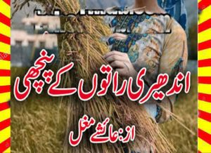 Andheri Raaton Ke Panchi Urdu Novel By Ayeshey Mughal 1