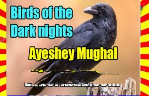 Birds Of The Dark Nights Urdu Novel By Ayeshey Mughal 1