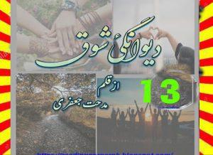 Deewangi E Shouq By Midhat Jaffery Episode 13 1