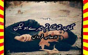 Guman Tha K Tum Mery Ho Lakin Urdu Novel By Sahiba Firdous 1