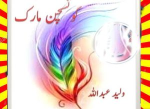 Question Mark Urdu Novel By Walid Abdullah 1