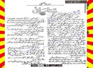Shanasai Urdu Novel By Sidratul Muntaha 1