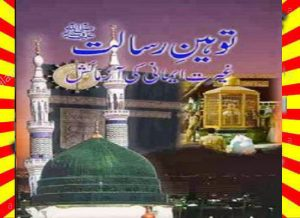 Tauheen E Risalat Urdu Novel By Muhammad Aslam Lodhi 1