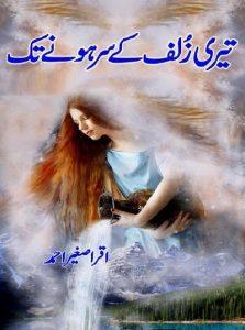 Tu Hi Ishq Tu Hi Junoon Complete Novel By Saheba Firdous 1