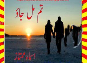 Tum Mil Jao Urdu Novel By Asma Mumtaz 1