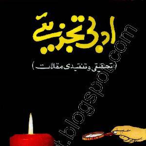 Adbi Tajzeeye by Dr. Qasim Jalal 1