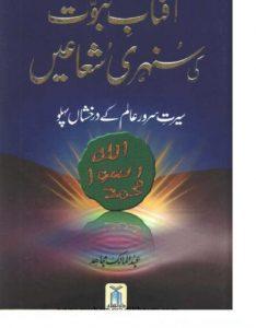 Aftab e Nabuwat Ki Sunehri Shuaein Abdul Malik Mujahid