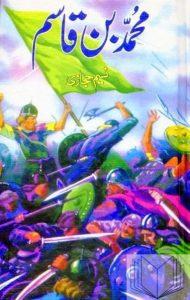Muhammad Bin Qasim Novel By Naseem Hijazi